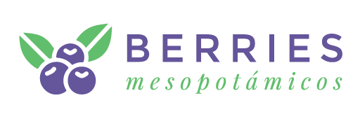 Berries Mesopotámicos